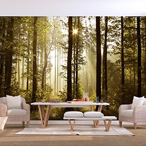 decomonkey | Fototapete Wald grün 250x175 cm | VLIES TAPETE | moderne Wanddeko | Riesen Wandbild | Design | Fototapeten | Wandtapete | Landschaft Baum Bäume Natur Sonne Nebel FOB0238a5XL