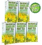 Dandelion Root Tea - Raw Organic Vitamin Rich - Best Reviews Guide