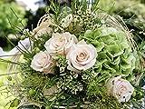 Artland Qualitätsbilder I Alu Dibond Bilder Alu Art 80 x 60 cm Botanik Blumen Foto Pink Rosa B9GS Blumenstrauss