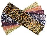 Best Tissue Papers - CI Safari Print Tissue Paper, Multi-Colour, 51x12x1 cm Review