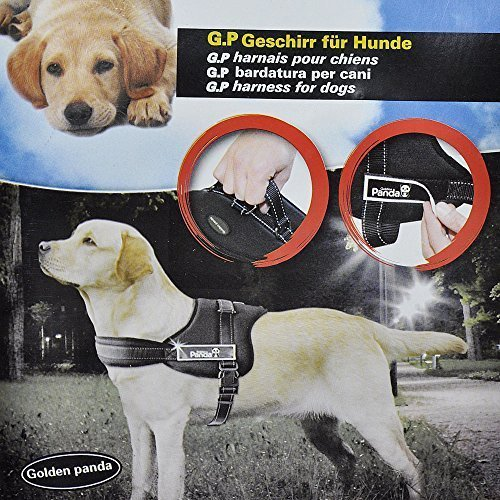 Best Quailty Adjustable Dog Safety Non Pull Padded