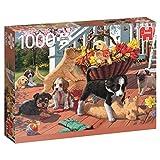 Jumbo 17246 - Welpen - 1000 Teile