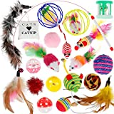 Best Kitten Toys - Cat Toys Nabance 20PCS Cat Interactive Toys Cat Review