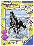 Ravensburger Malen nach Zahlen 28565 - Pferd am Strand, Malset