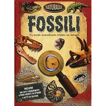 Fossili. Ediz. Illustrata