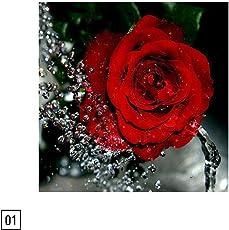 HitTime Rose Pattern DIY 5D Diamond Embroidery Cross Stitch Painting Decor 30 * 30CM