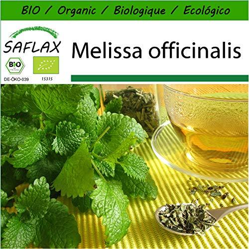 SAFLAX - BIO - Zitronenmelisse - 1000 Samen - Mit keimfreiem Anzuchtsubstrat - Melissa officinalis