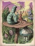onthewall Alice au Pays des Merveilles The Caterpillar Vintage Art Print Poster 40x 30cm (PDP 074)