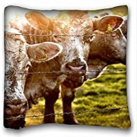 Decorative Square throw Pillow case Animals Cow Fence S Grass sunlight 18in x 18in due parti - Fence Cleaner