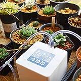 Sistema di irrigazione automatica micro irrigazione a goccia Kit fai-da-te con timer 30 giorni e ricarica USB