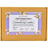 Bee Organik Aromatherapy Candle Making Kit | Complete Materials and Video Training | Soy Wax - Paraffin Free | Makes 4 Glass