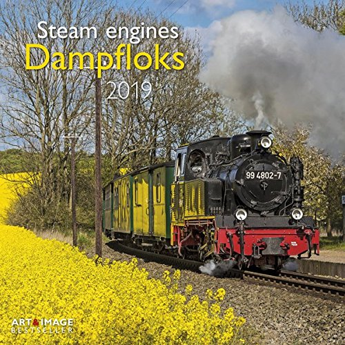 Dampfloks 2019 Broschürenkalender: Steam engines