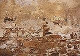 Fototapete Alte Mauer, gebaut aus Stein und Stuck XL 350 x 245 cm - 7 Teile Vlies Tapete Wandtapete - Moderne Vliestapete - Wandbilder - Design Wanddeko - Wand Dekoration wandmotiv24