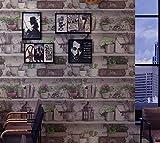 Poowef Wallpaper American Retro Vintage Vasen, Blumenvasen, Weinkeller, Alte Bücher, Wallpaper, Restaurants, Bars, Cafés, Tapeten, 0,53 X 10 M, Ein