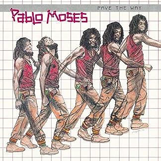 Pave The Way [180 gm LP vinyl] [Vinilo]