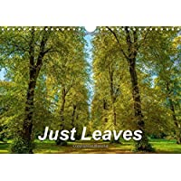 Just Leaves (Wall Calendar 2017 DIN A4 Landscape): Kaleidoscope of leaf colours (Monthly calendar, 14 pages )