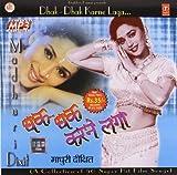Dhak Dhak Karne Laga - Madhuri Dixit