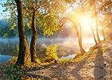 YongFoto 2,2x1,5m Fondos Fotograficos Selva Bosque Árboles Río Niebla Hojas Doradas Sol Naturaleza Otoño Fondos para Fotografia Fiesta Niños Boby Boda Retrato Personal Estudio Fotográfico Accesorios