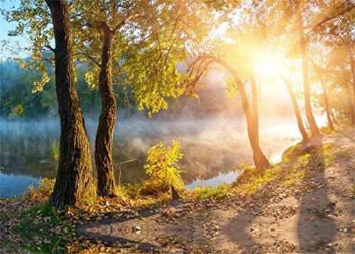 YongFoto 2,2x1,5m Vinyl Foto Hintergrund Dschungel Wald Bäume Fluss Nebel Goldene Blätter Sonnenschein Natur Herbst Fotografie Hintergrund für Fotoshooting Portraitfotos Kinder Fotostudio Requisiten Herbst Nebel