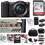 Sony NEX-5TL/B 16.1MP Compact Interchangeable Lens Digital Camera (Black) + Sony NPFW50 Battery Pack + Sony Camcorder Case + Kit Bundle