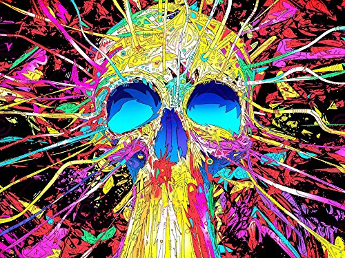 photography-graffiti-mural-street-wall-psychedelia-skull-18x24-poster-art-print-lv10884