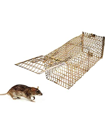 Rodent Control: Buy Rodent Control Online at Best Prices in