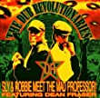 The Dub Revolutionaries