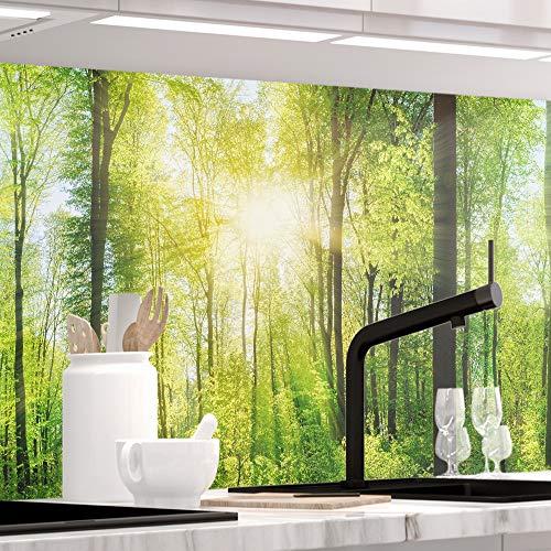 1.5 Eine Folie (StickerProfis Küchenrückwand selbstklebend Premium Wald 1.5mm, Versteift, alle Untergründe, Hartschicht, 60 x 400cm)