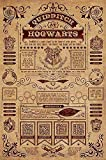 Poster Harry Potter - Quidditch at Hogwarts (61cm x 91,5cm) + un poster surprise en cadeau!