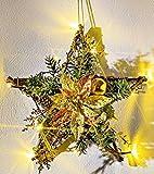LED Rattan Stern - Weihnachtsstern - Weihnachtszeit - Fensterdeko - Fensterbeleuchtung - Weihnachtsbeleuchtung - Rattanstern - Türkranz - Beleuchtung - Weihnachtsdeko - Dekostern - Weihnachten - Winter - Advent - Wandkranz - Wanddeko - Dekoration - Weihnachtskranz - Kunststoff - gold und kupferfarbig Deko - LED´s batteriebetrieben - 30 x 30 cm