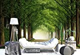 Vlies Fototapete Fotomural - Wandbild - Tapete - Wald Bäume Passage Fahrbahn Blumen - Thema Wald und Bäume - XL - 368cm x 254cm (BxH) - 4 Teilig - Gedrückt auf 130gsm Vlies - 1X-1302773V8