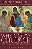 Image de Why Go to Church?: The Drama of the Eucharist