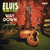 Way Down in the Jungle Room [Vinyl LP] [Vinyl LP] [Vinyl LP]