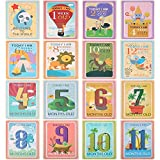 36 Sheet Milestone Photo Sharing Cards Gift Set Baby Age Cards - Baby Milestone Cards, Baby Photo Cards - Newborn Photo Props (4 x 6 Cards)
