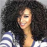 Bestland Afro-Perücke, Kunsthaar, lang, wellig, lockig, Perücken für schwarze/afroamerikanische Frauen, hitzebeständige Faser