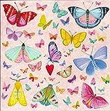 Quadratische Postkarte Mila Marquis * Schmetterlinge