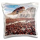 Danita Delimont - Texas - Big Bend NP, Castellon Mountain, Texas - US44 LNO0045 - Luc Novovitch - 16x16 inch Pillow Case (pc_94483_1)