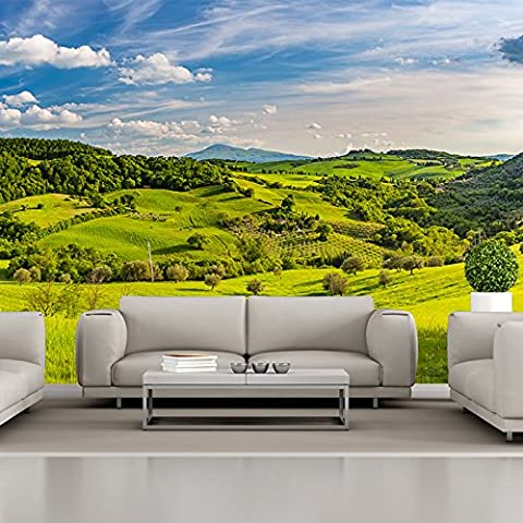 Tuscan Countryside Wall Mural Green Landscape Photo Wallpaper Nature Home Decor available in 8 Sizes X-Small Digital