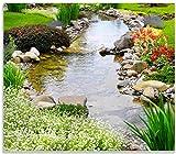 Wallario Herdabdeckplatte/Spritzschutz aus Glas, 1-teilig, 60x52cm, für Ceran- und Induktionsherde, Blumen am Teich