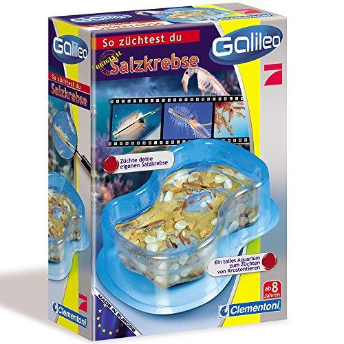 galileo salzkrebse Clementoni Galileo Salzkrebse mit Aquarium, Krebseier, Pipette, 15x21 cm, ab 8 J || Salz Krebs Box Eier Experimentieren Experimentierkasten