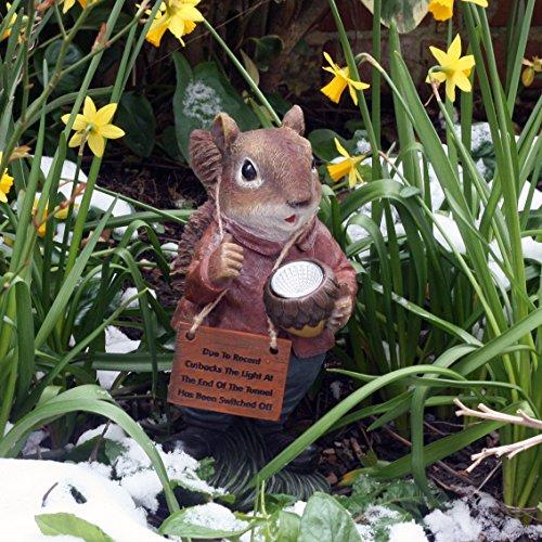 Garden Animals Collection Stevie The Squirrel - Garden Decorative Figure (Resin, 28 cm), Squirrel design