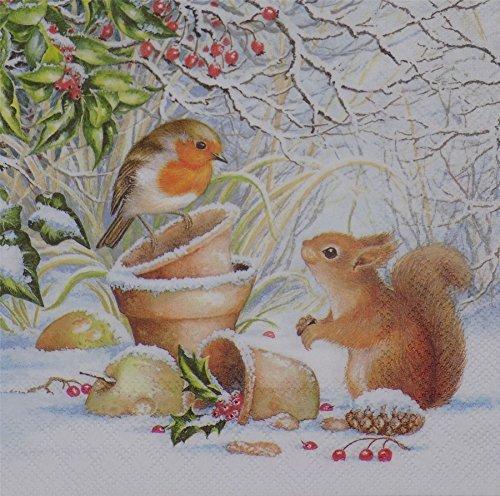 Winter Robin écureuil Blanc 3 plis 20 serviettes en papier 33 x 33 cm -33 X 33 cm