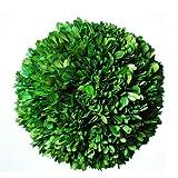 Galt International echtes natürlich konserviertes, Buchsbaum Dekorative Kugel, 20,3cm