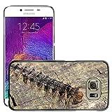 Just carcasa caliente estilo teléfono celular PC Funda rígida//m00140185Caterpillar Oriental Verde larvas//Samsung Galaxy S6(no para S6edge)