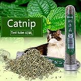Jiamins Catnip Nepeta Cataria Natural 40ML