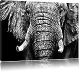Monocrome, Elefant Porträt , Format: 120x80 auf Leinwand, XXL riesige Bilder fertig gerahmt mit Keilrahmen, Kunstdruck auf Wandbild mit Rahmen, günstiger als Gemälde oder Ölbild, kein Poster oder Plakat