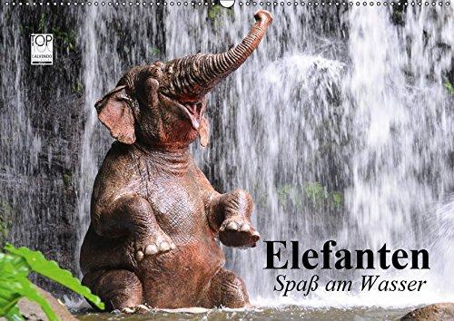 Elefanten. Spaß am Wasser (Wandkalender 2019 DIN A2 quer): Elefanten Babys beim...