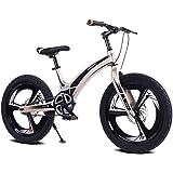 Moma Bikes Bicicleta Infantil, Montaña GTT20