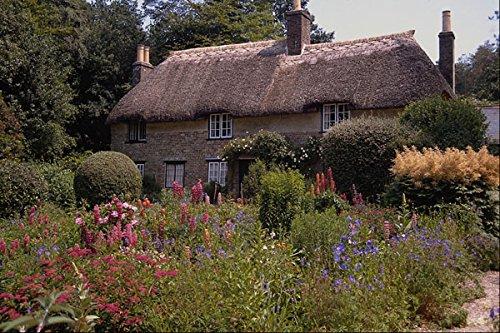 683063 Thomas Hardy's Cottage Dorset England A4 Photo Poster Print 10x8