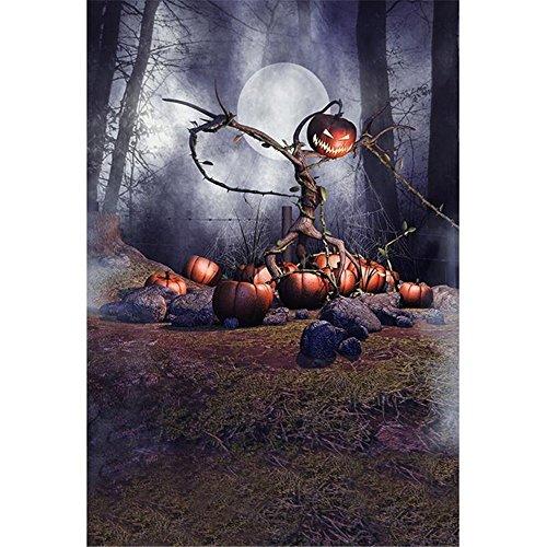 Spider Web Kürbis - Full Moon Night Photography Hintergrund Halloween